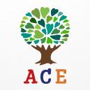 Agape Centre for Excellence